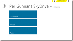 Windows 8 Preview SkyDrive App