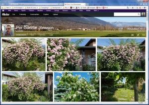 Flickr Photo Stream