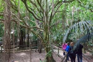 Trip to Zoo de Servion